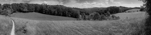 land_sw_petervogel_016.jpg