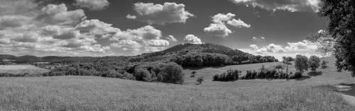 land_sw_petervogel_017.jpg