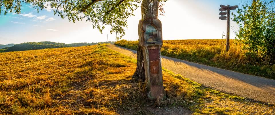 land_petervogel_030.jpg