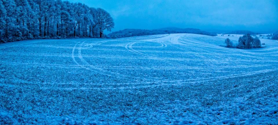 land_petervogel_049.jpg