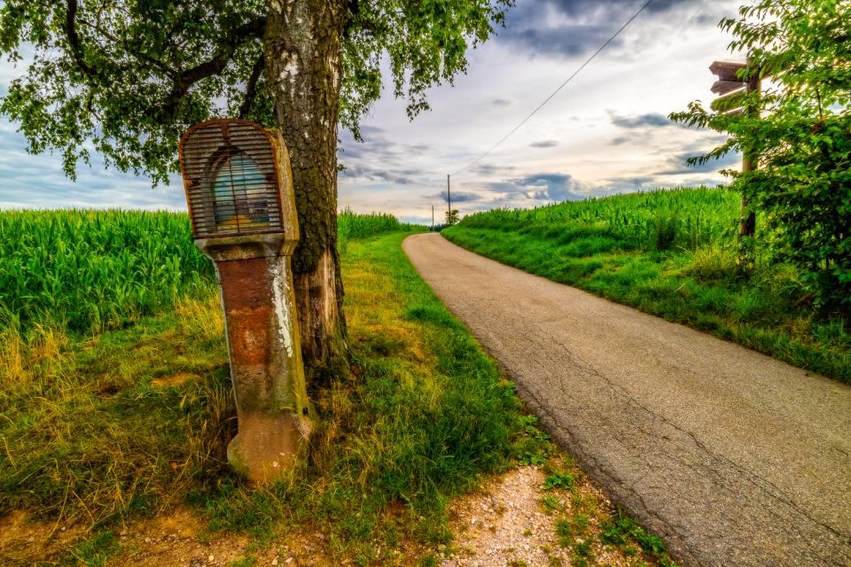 land_petervogel_071.jpg