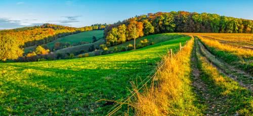 land_petervogel_001.jpg