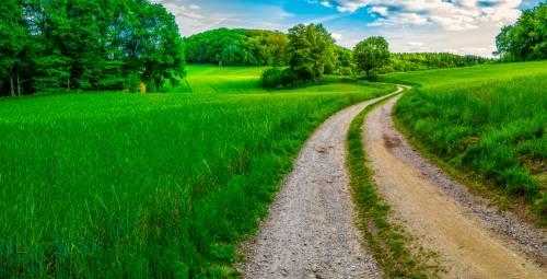 land_petervogel_004.jpg