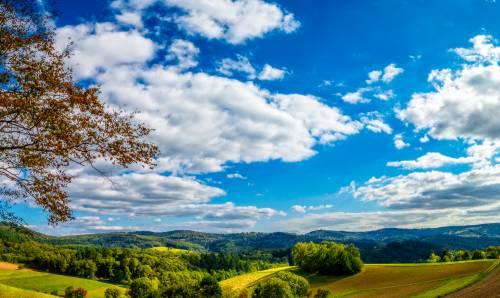 land_petervogel_025.jpg