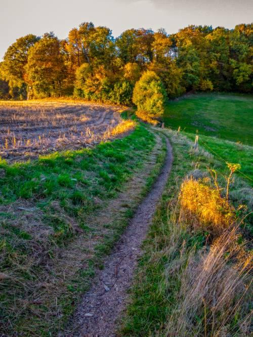 land_petervogel_035.jpg
