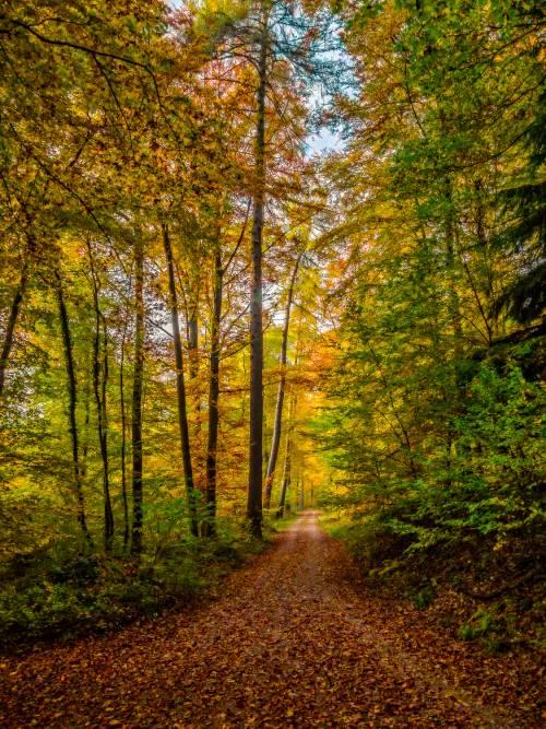 land_petervogel_038.jpg