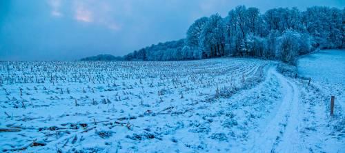 land_petervogel_048.jpg